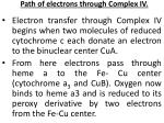 path of electrons through complex iv