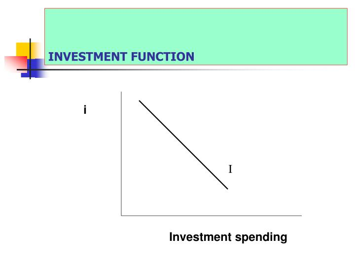 INVESTMENT FUNCTION