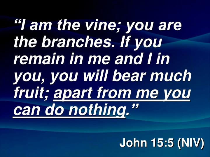 """""""I am the vine; you are the branches. If you remain in me and I in you, you will bear much fruit;"""