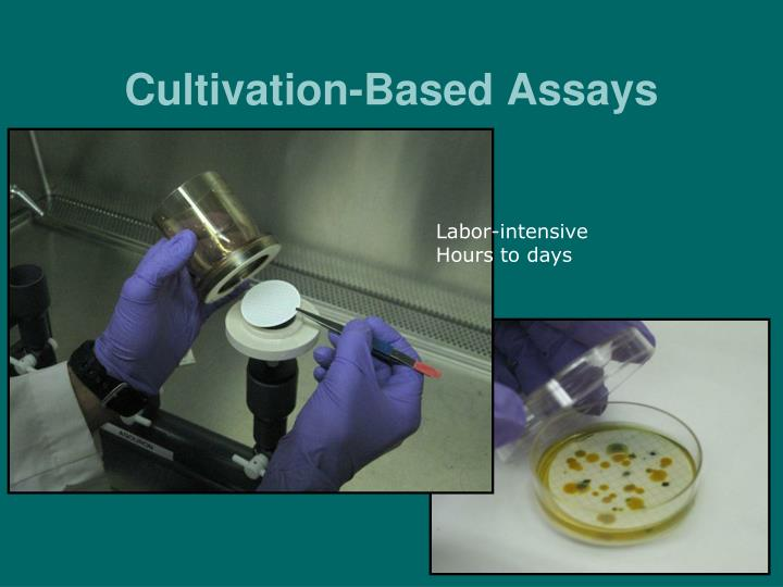 Cultivation-Based Assays