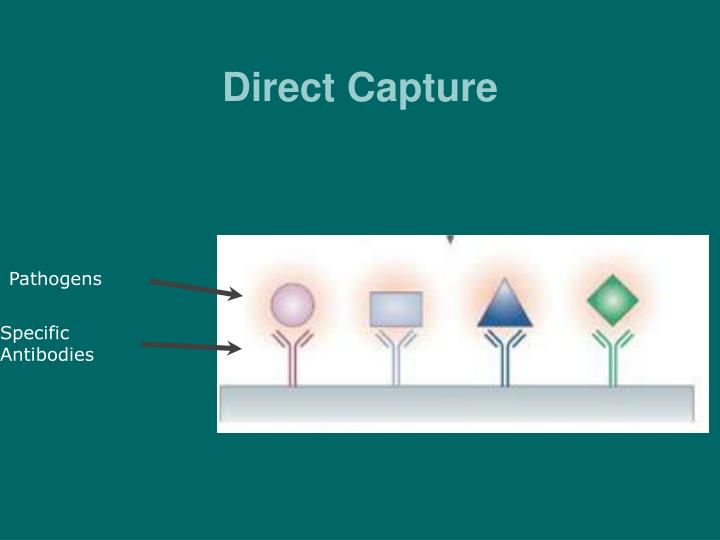 Direct Capture