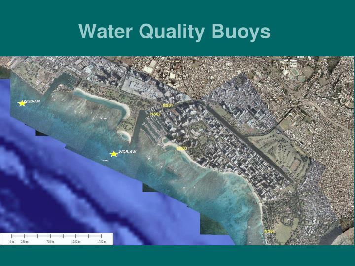 Water Quality Buoys