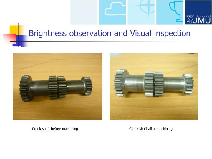Brightness observation and Visual inspection