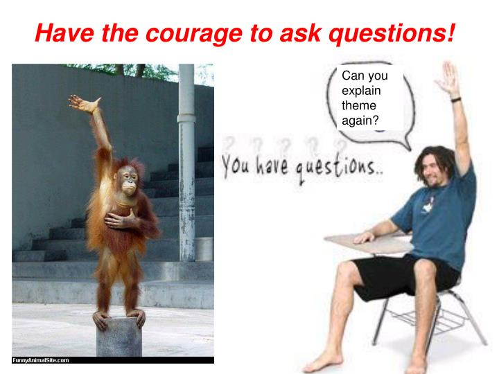 Have the courage to ask questions!
