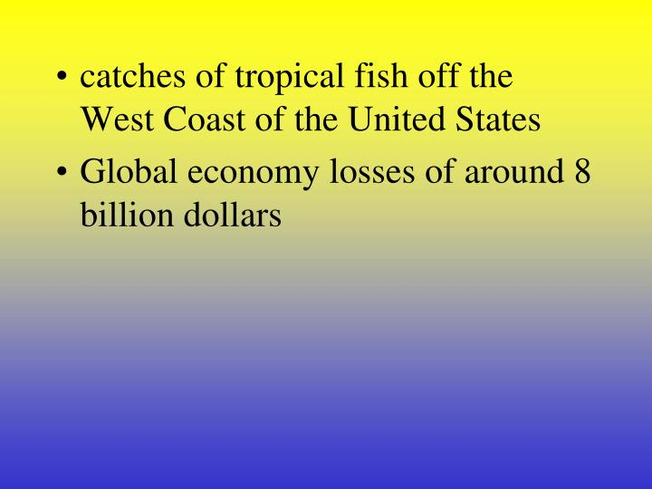 catches of tropical fish off the West Coast of the United States