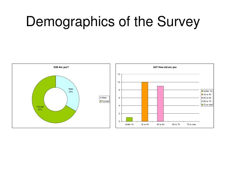 Demographics of the Survey