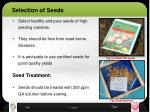 selection of seeds