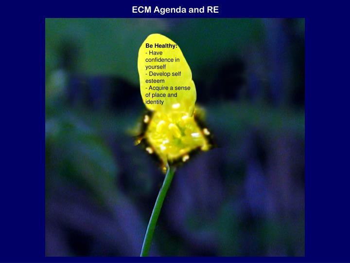 Ecm agenda and re1