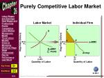 purely competitive labor market1