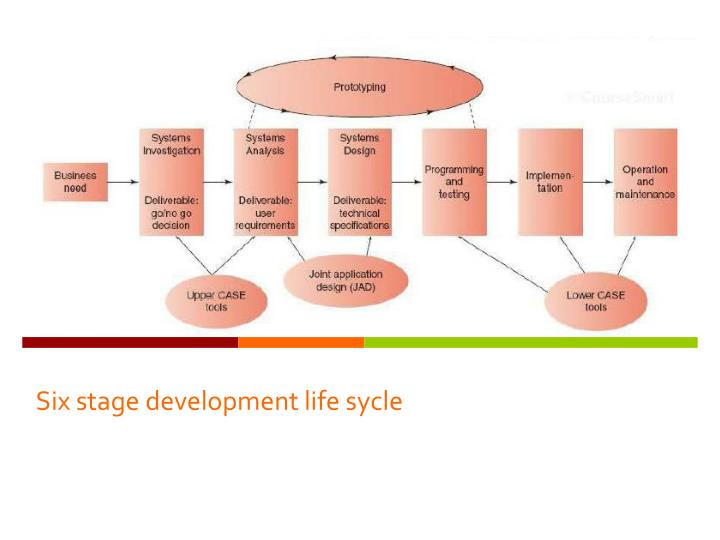 Six stage development life