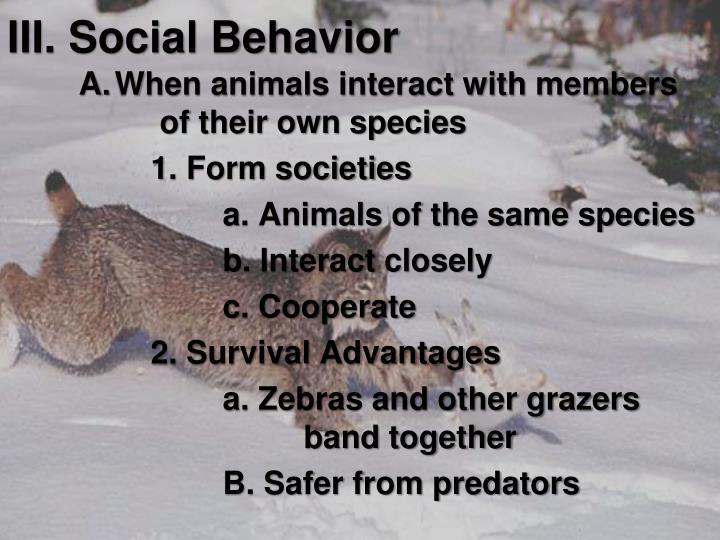 III. Social Behavior