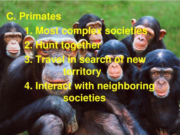 C. Primates