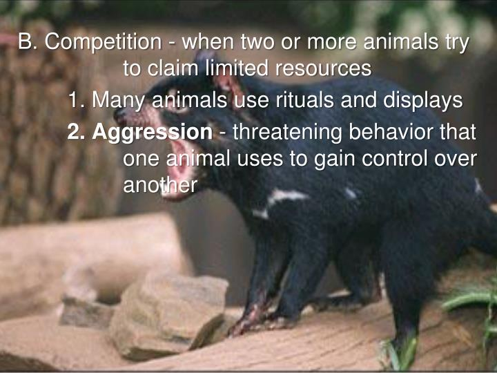 B. Competition - when two or more animals try to claim limited resources