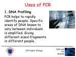 uses of pcr