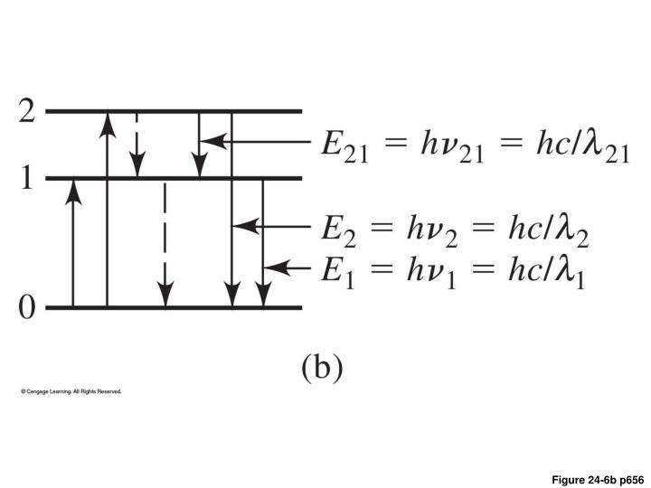 Figure 24-6b p656