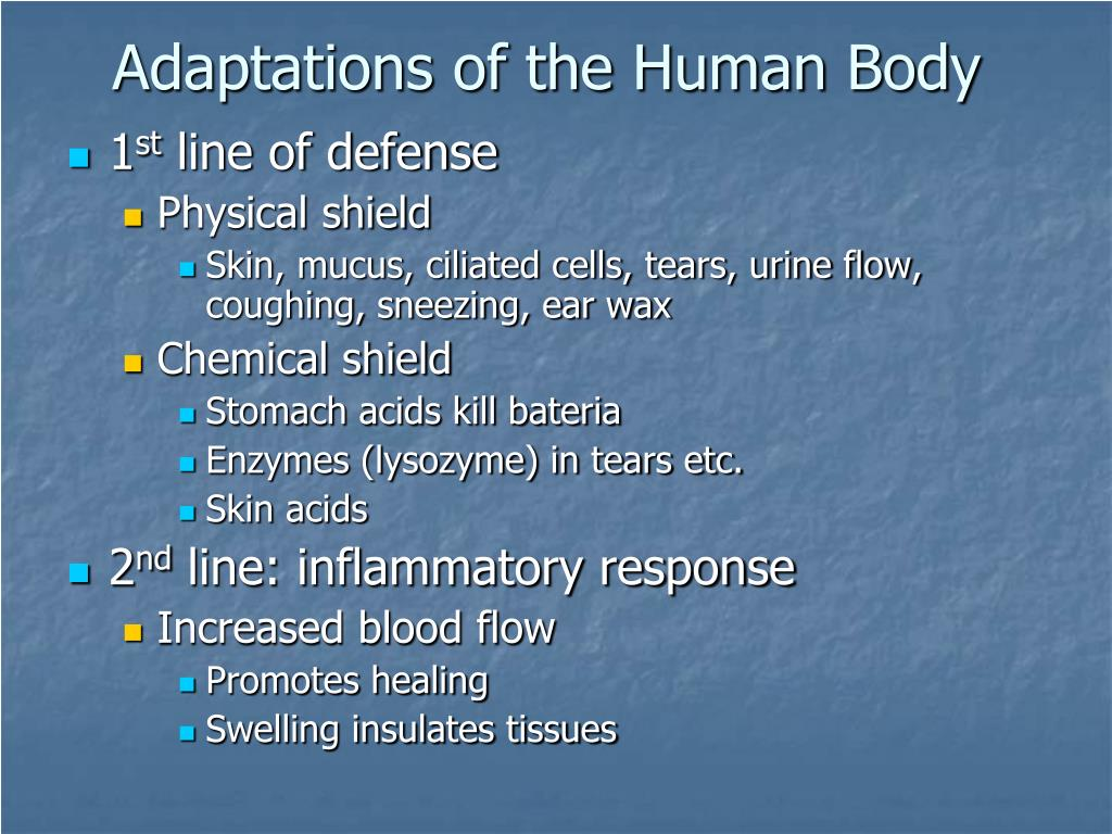 Ppt - Chapter 43  The Immune System Powerpoint Presentation  Free Download