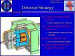 detector strategy