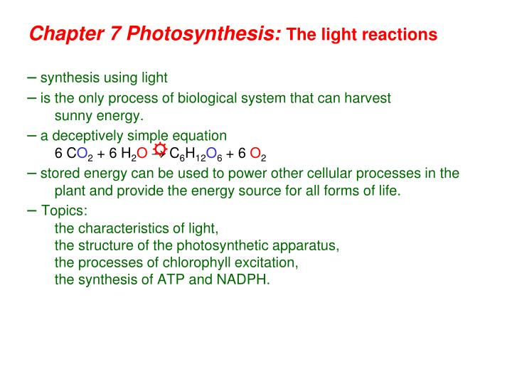 chapter 7 photosynthesis the light reactions n.