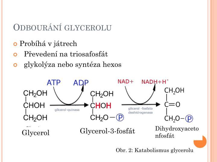 Odbourání glycerolu