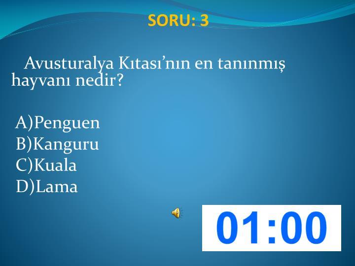 SORU: 3