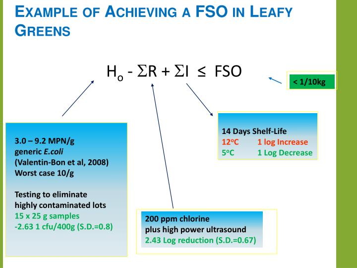 Example of Achieving a FSO in Leafy Greens