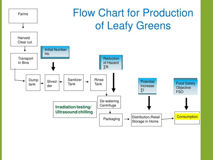 Flow Chart for Production of Leafy Greens
