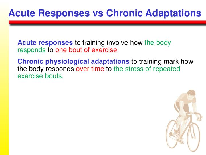 Acute Responses vs Chronic Adaptations