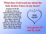 what does god teach me about the holy desires i have in my heart