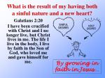 what is the result of my having both a sinful nature and a new heart1