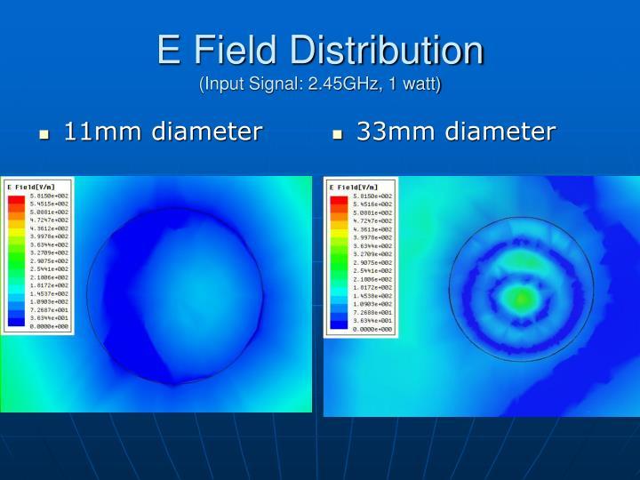 E field distribution input signal 2 45ghz 1 watt