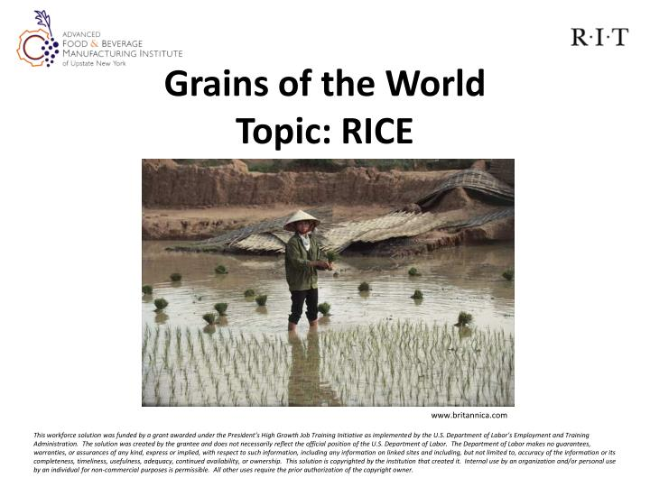 grains of the world topic rice n.