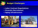 budget challenges2