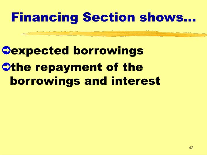 Financing Section shows...