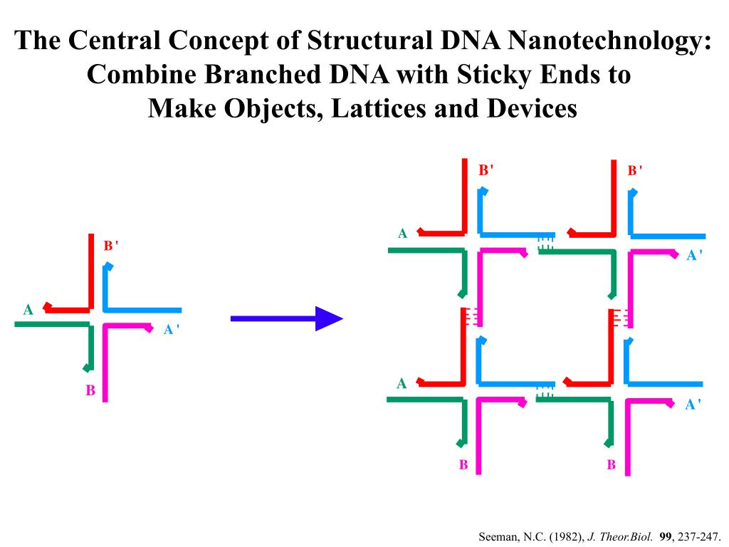 「seeman DNA nano」の画像検索結果