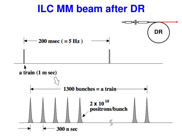 ILC MM beam after DR