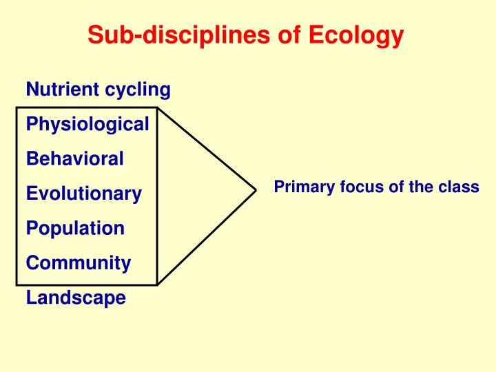 Sub-disciplines of Ecology
