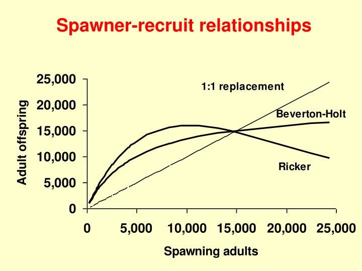 Spawner-recruit relationships