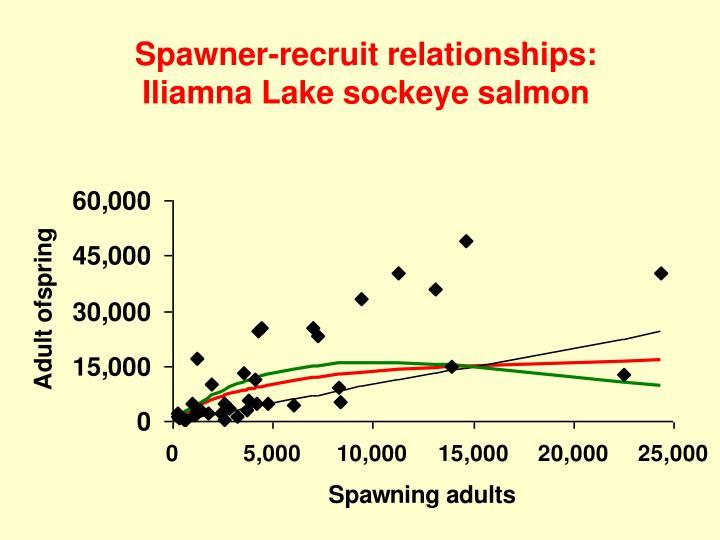 Spawner-recruit relationships: