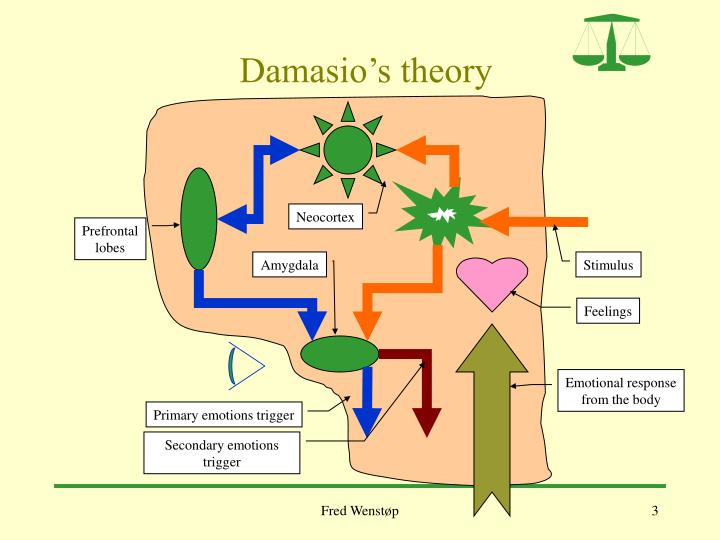 Damasio s theory