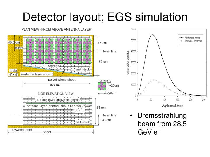 Bremsstrahlung beam from 28.5 GeV e