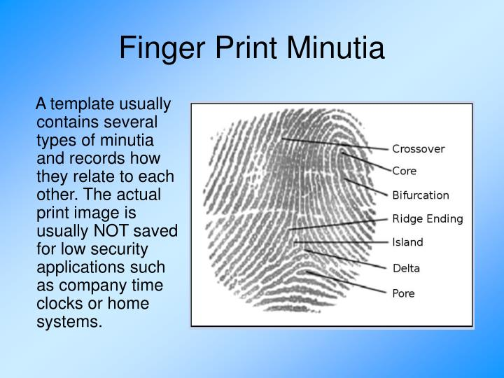 Finger Print Minutia