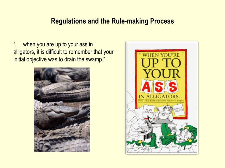 regulations and the rule making process n.