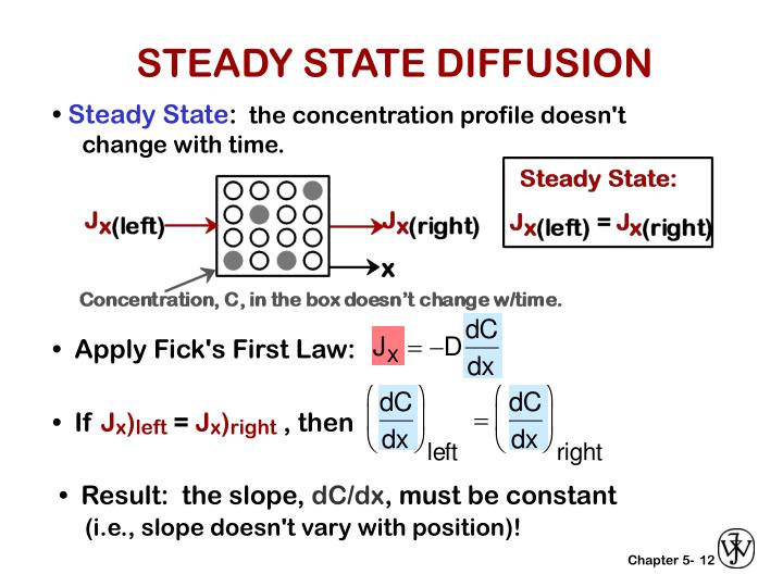 STEADY STATE DIFFUSION