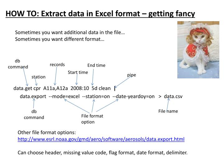 HOW TO: Extract data in Excel format – getting fancy