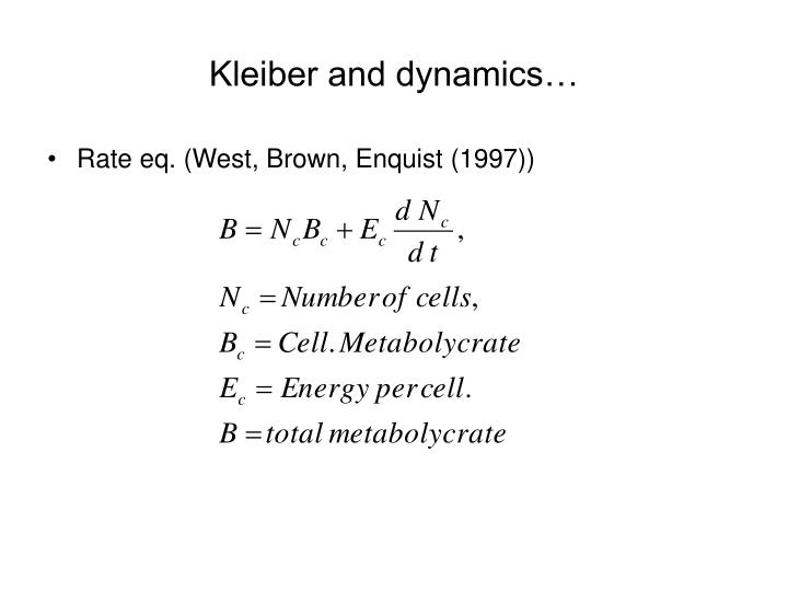 Kleiber and dynamics…