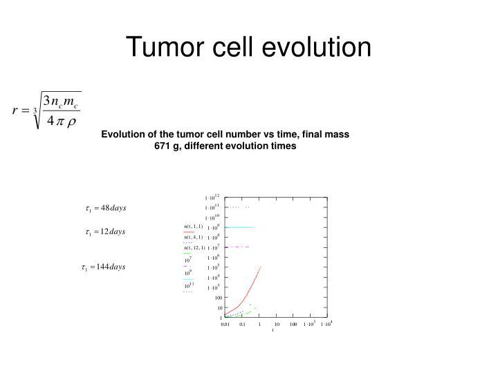 Tumor cell evolution