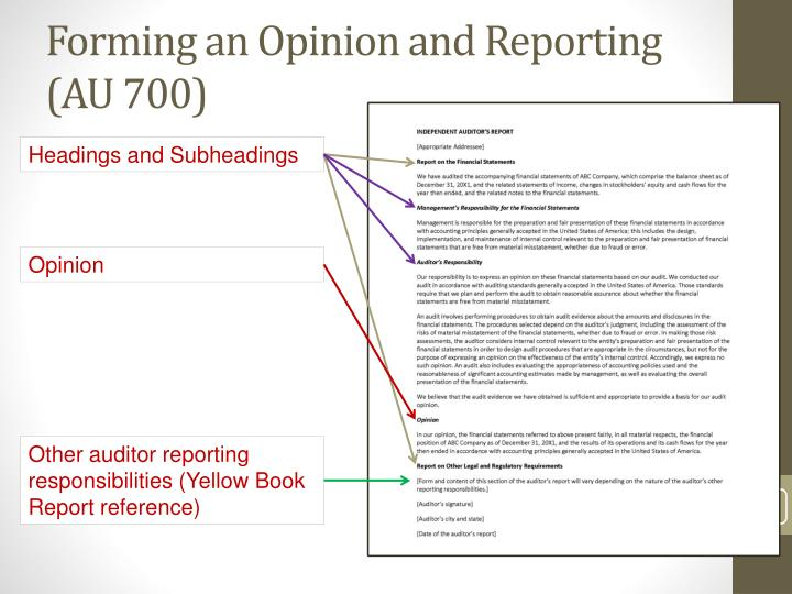 Forming an Opinion and Reporting (AU 700)