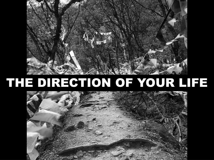 THE DIRECTION OF YOUR LIFE