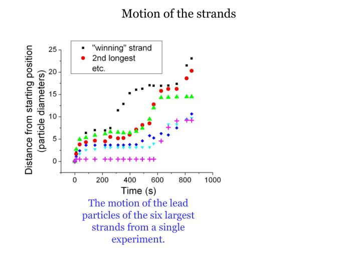 Motion of the strands