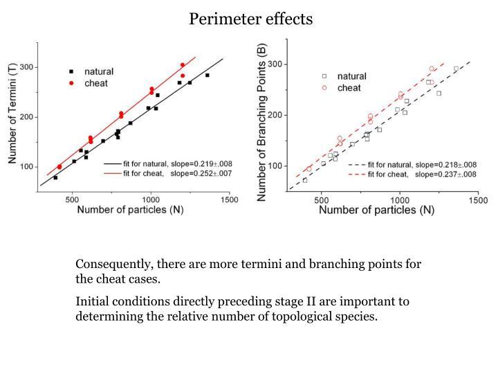 Perimeter effects